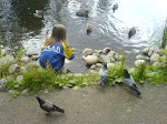 A cute girl feeding wild ducks and doves (I think!!), July 2007