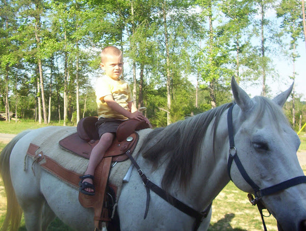 Rideum Cowboy