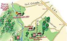 Roma XII e il Parco Decima Malafede WWF