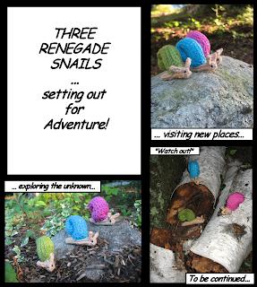 Snail Adventures