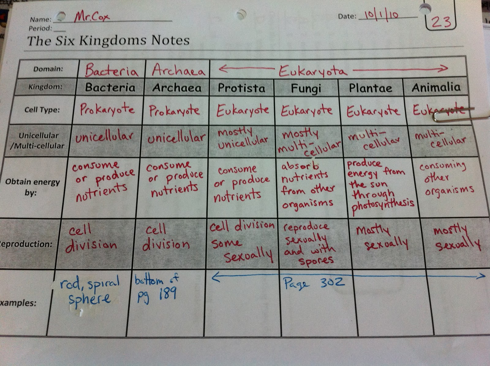 Kingdoms In Science Worksheet
