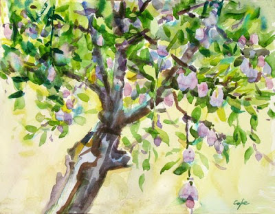 plum in fruit watercolour by Adam Cope