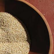 Quinoa Quinoa Quinoa