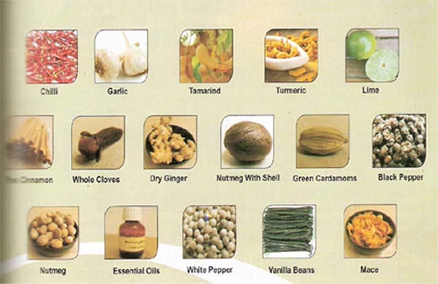 Nu Natural Foods
