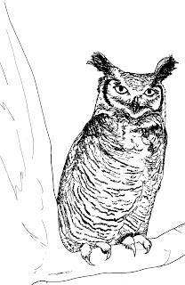 Wildlife, Wonder and Worms: December 2010
