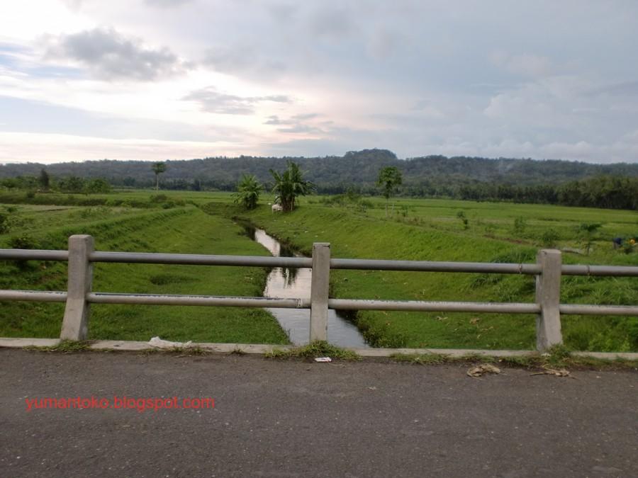 Desa Tanjungsari Kecamatan Kutowinangun, Kebumen