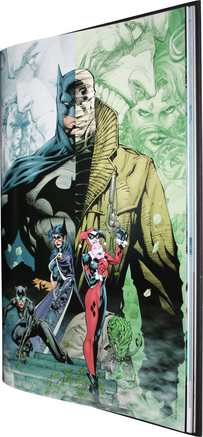 Comic Books Movies Games Blog Everything Related To Fiction Source Presented By League Of Fiction Absolute Batman Hush Jeph Loeb Jim Lee Scott Williams Dc Comics