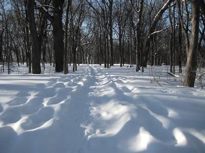 Gale Woods Farm trails
