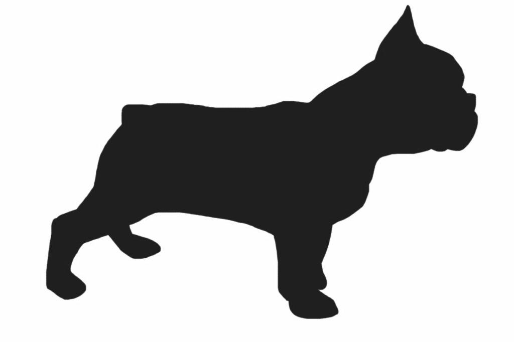 creth davis drawing french bulldog iphone