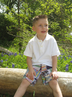 happy boy sitting on log in bluebonnets