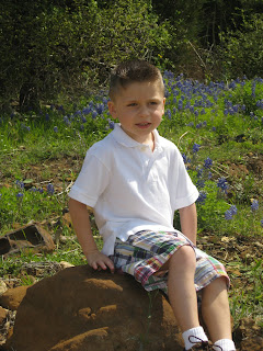 boy sitting on rock in bluebonnet patch