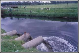 contaminacion agua+medio ambiente