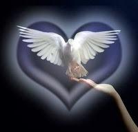 paz+paloma+poemas+dia+de+la+paz+no+a+la+guerra+paloma