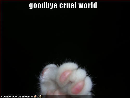 Goodbye Cruel World: My Vanity Lair: Farewell