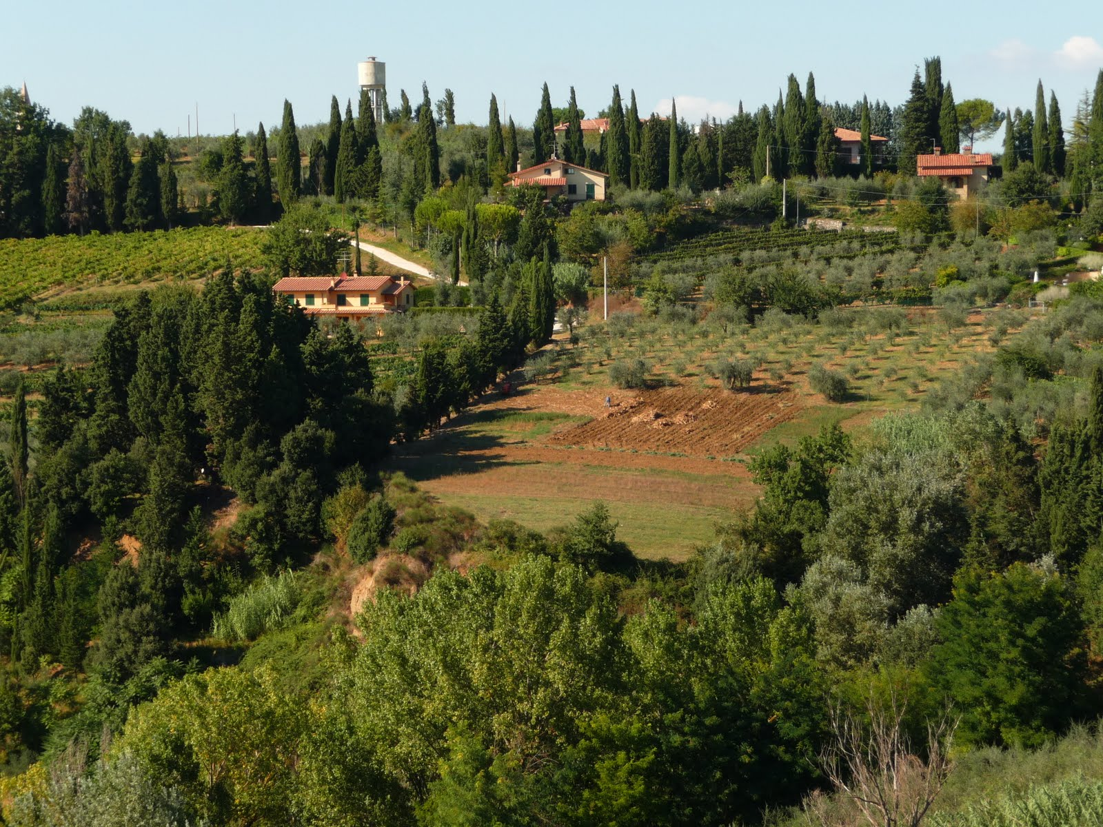 Kathy Dunham Artist Amp Photographer Tuscan Countryside