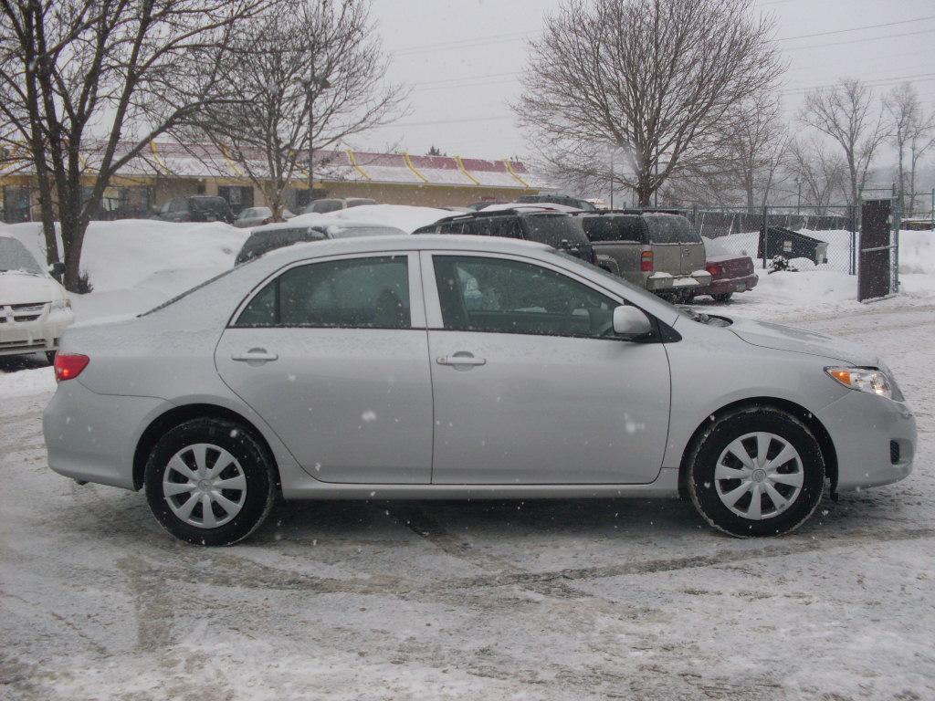 Toyota Corolla Grey