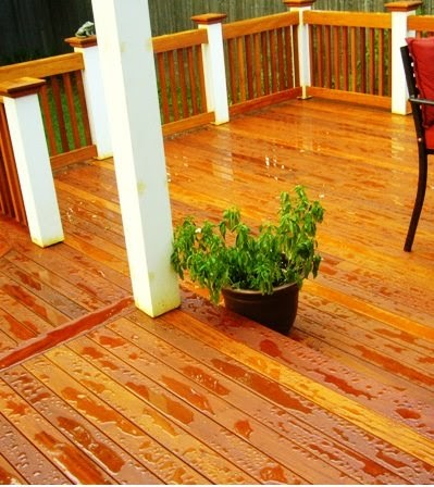 Wood Deck Care Protecting and Staining Ipe Mahogany and
