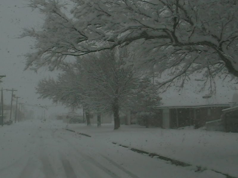 NewsChannel 10 Viewer Weather Pics: SNOW DAY TODAY IN BOISE