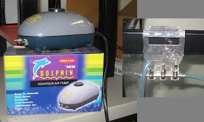 Aquarium Pump Turn Aquarium Pump Into Vacuum