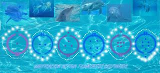 8-8-8 Activacion de los Filamentos Delfinicos en Nuestro ADN 15