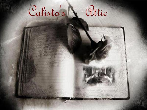 Calisto's Attic