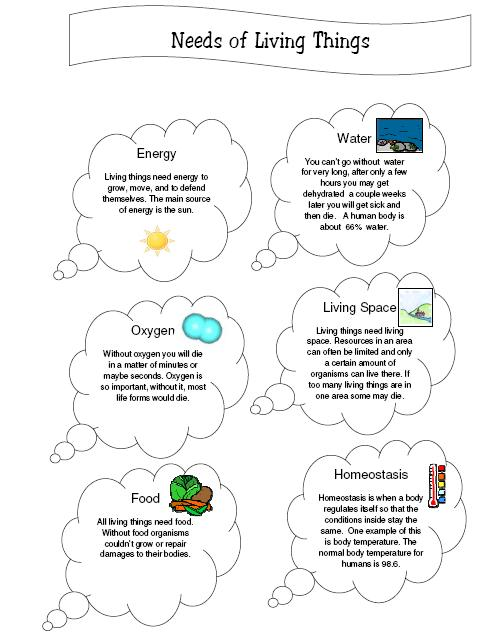 Concept Map – Characteristics of Living Things Images