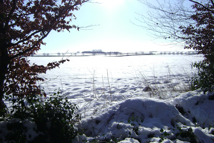 A Winter's View from Shipton-under-Wychwood, Oxfordshire, UK (February 2009)