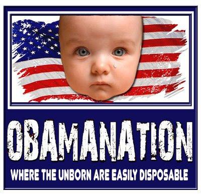 NO OBAMANATION!