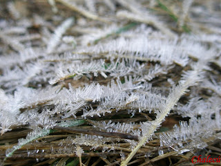 helada en invierno