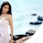 Gorgeous Nikita Rawal Photoshoot