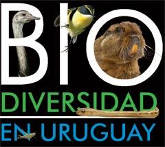 Biodiversidad en Uruguay, el multimedia