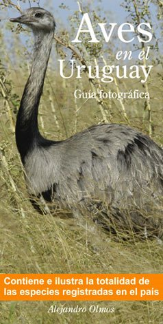 Aves en el Uruguay
