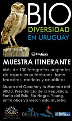 Muestra itinerante Biodiversidad en Uruguay