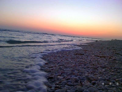 Sanibel Island sunset while waves lap at shells on the beach.