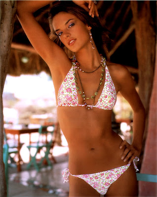 Beautiful Alessandra Ambrosio in a bikini