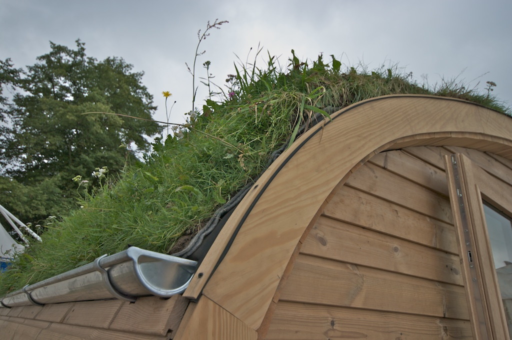 photographer 39 s garden green roofs a guide. Black Bedroom Furniture Sets. Home Design Ideas