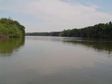 Rio Arinos