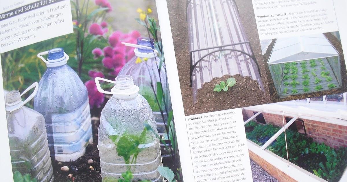 mauerblumen gem se selbst anbauen von jo whittingham. Black Bedroom Furniture Sets. Home Design Ideas