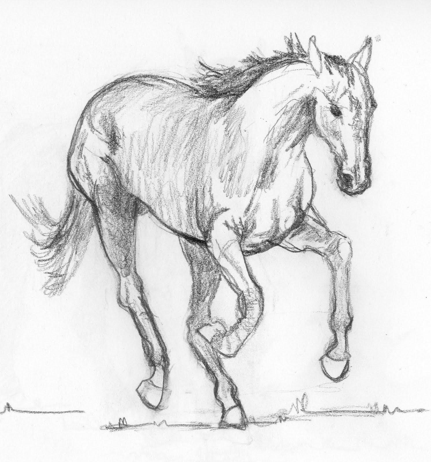 Frabjous Art Musings: Horse Sketch 26