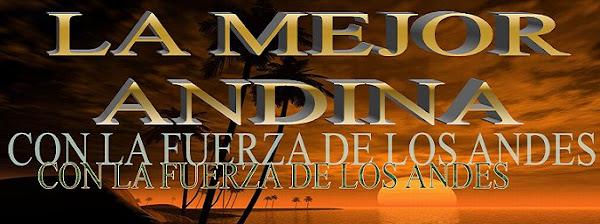 andina musica