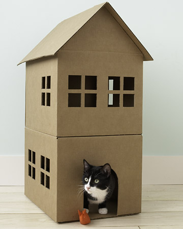 mascotas, casas, manualidades, labores, plantillas, cartón, reciclar