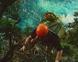 Wildlife officer climbing Little Mangere Island