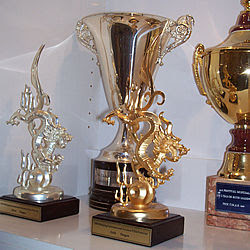 NHNZ Awards Cabinet