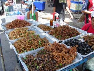 entomophagy Our Future Food?
