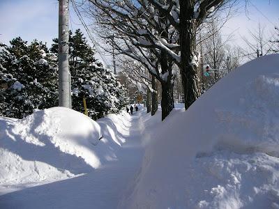 Sapporo Sidewalk in January