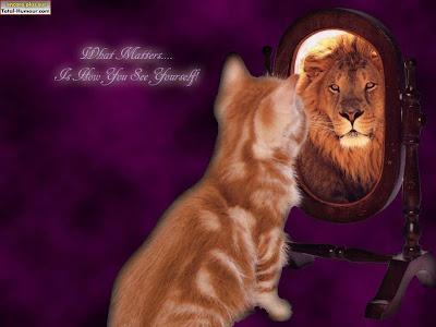Horoscope 2012 ... - Page 3 Humour_animal_028