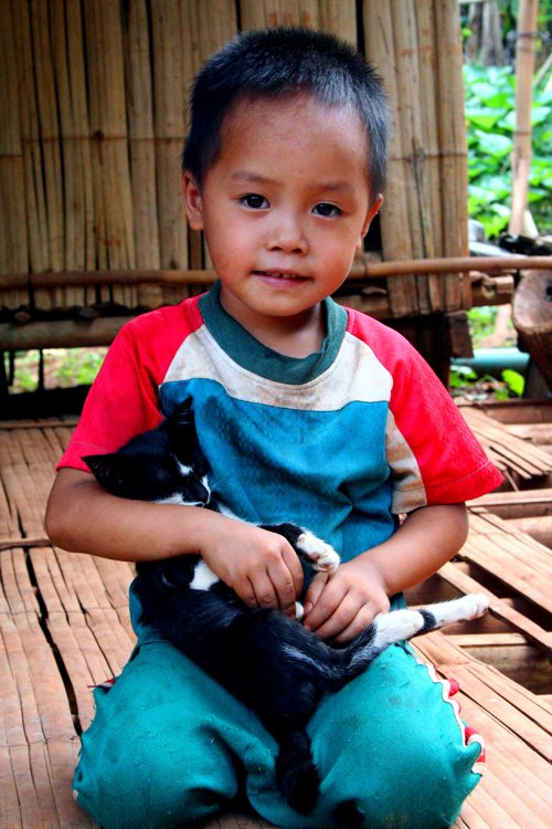 Cute Thai Boy Carrying a Kitten
