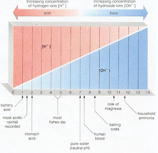 pH of common materials