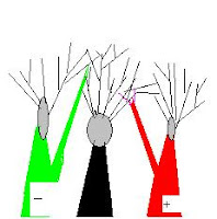 diagrammatic representation of cortical dipole with dendritic trees