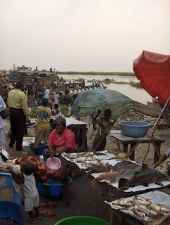 Mercato del pesce a Kinkole